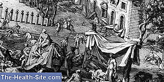 Plague in the middle ages