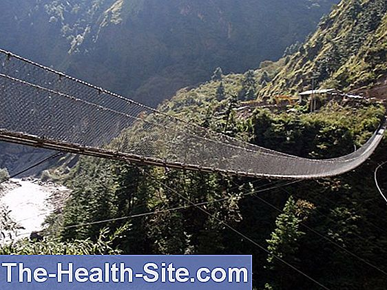 Suspension bridge over the pain