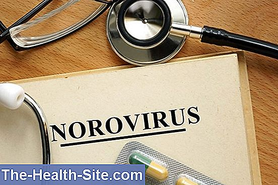 Norovirus infektion